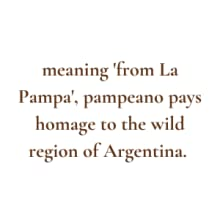 meaning from La Pampa