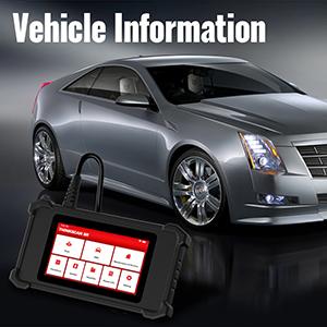 vehicle info check