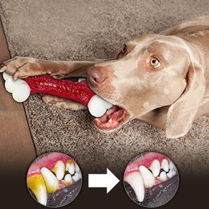 Gift Dog Toys