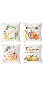 Thanksgiving Fall Pillow Covers
