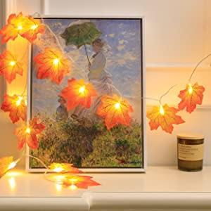 fall decorations for home clearance