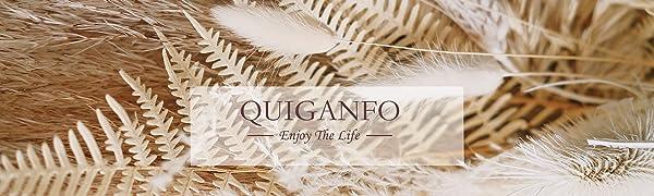 Quiganfo