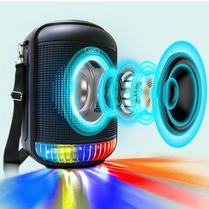 portable karaoke machine for adults