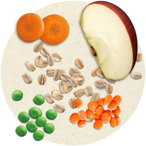Gerber PowerBlend Cereal ingredients