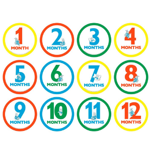 month buttons, milestone markers