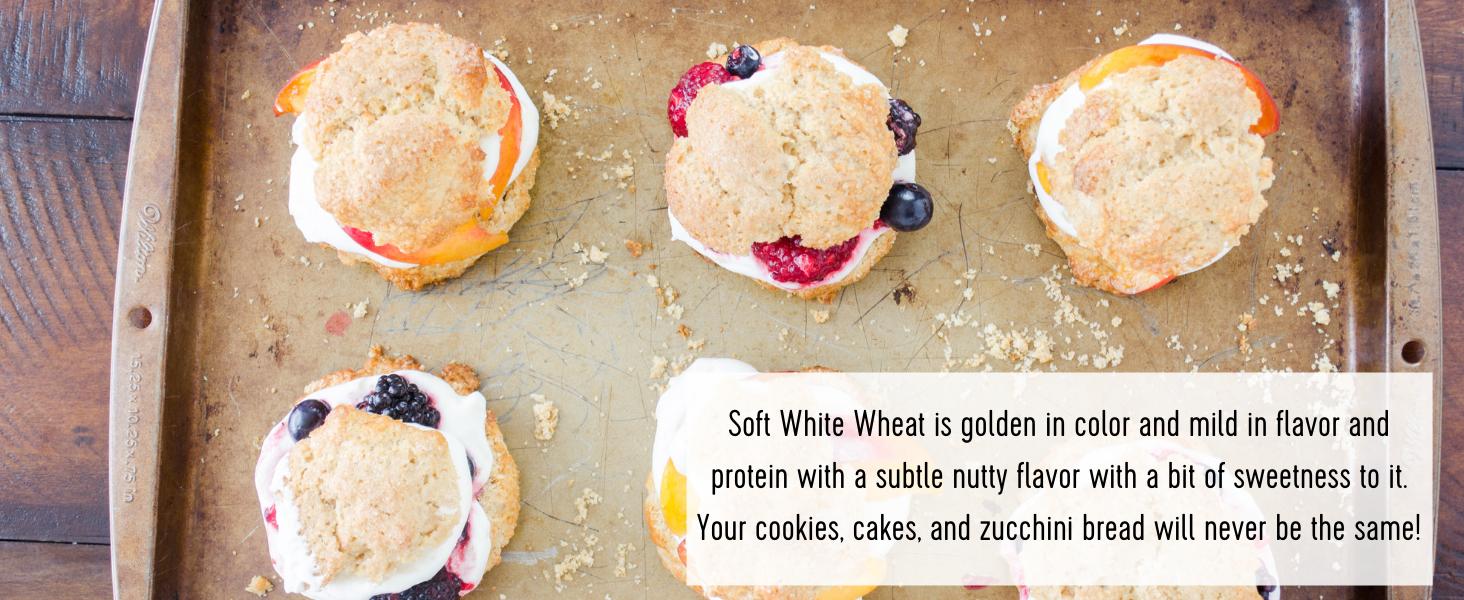 wheat berries soft white wheat berry bulk