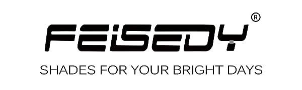 feisedy logo