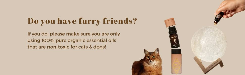 diffuser essential oils pets cats and dogs
