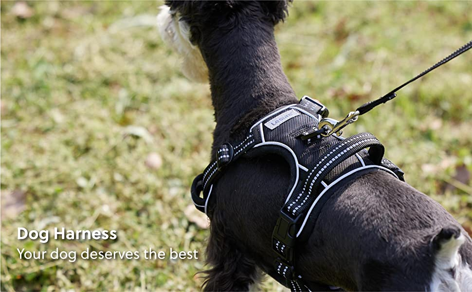 Bedsure | dog harness