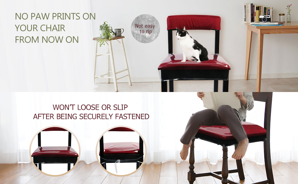Clear chair protector for cat