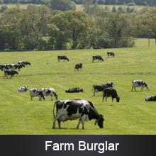 Farm Burglar