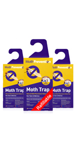 Clothes Moth Trap - 3 Pack