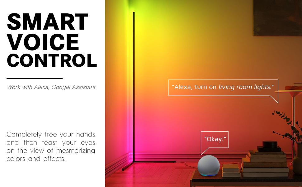 smart voice control