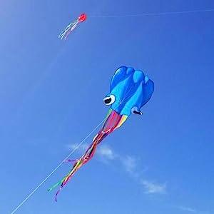 Octpus kite