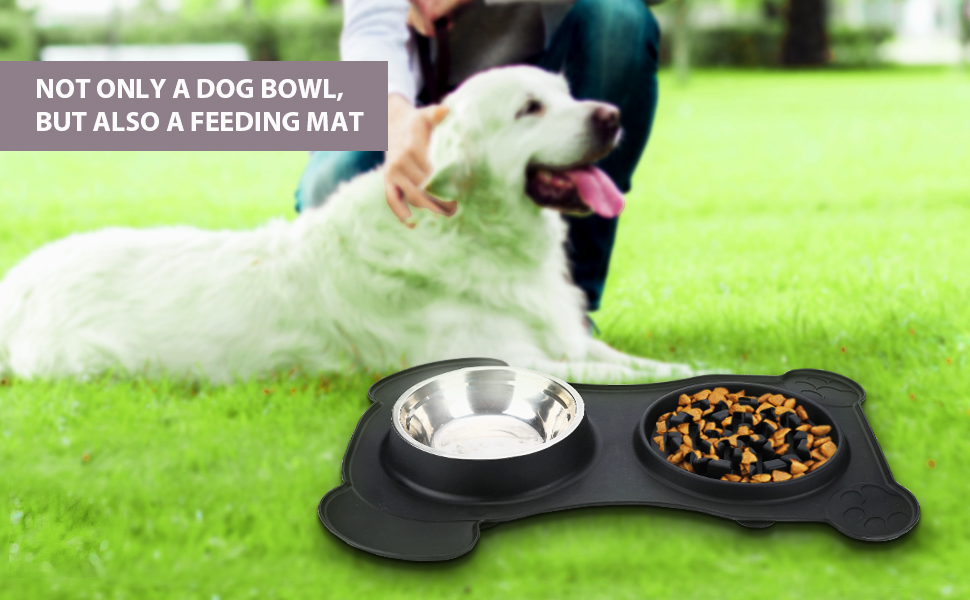 Pet Bowl Set, bring happiness and happy eating to dogs