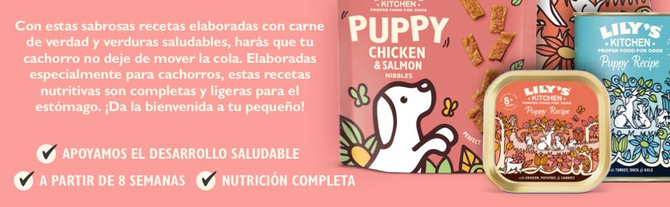 puppies foods
