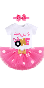 Half way to one outfit baby girl mouse themed birthday party supplies