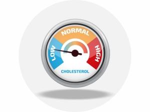 low cholestrol