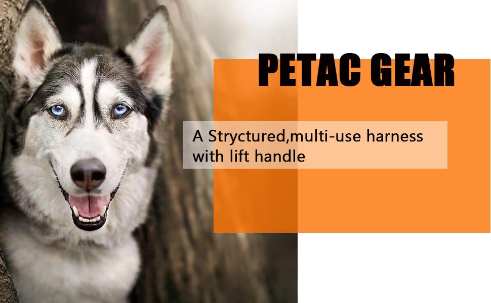 petac gear