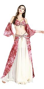Elegant Belly Dancer Costume