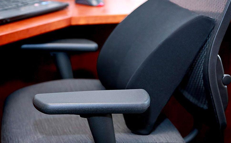 DMI Lumbar Support Cushion