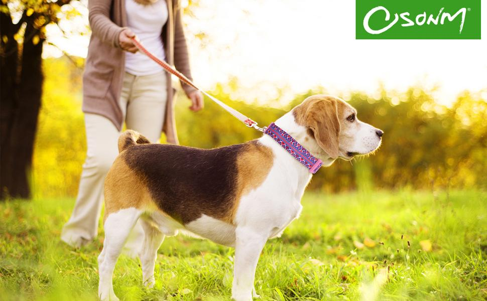 Osonm Dog Collar