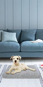 grey dog bed with removable cover
