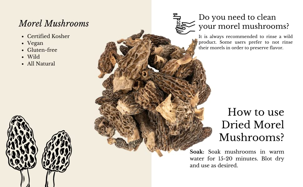 how to use dried morel mushrooms? Soak in warm water for 15-20 minutes