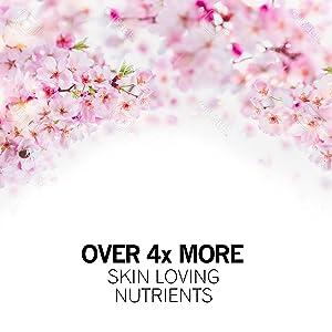 itsas aladierno olioa itsas aladierno organiko hotz estutu aurpegia vegan ile menopausia larruazala zaintzeko purua