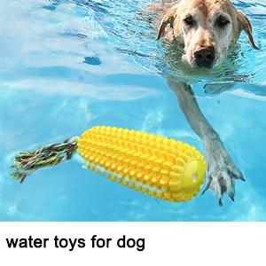 Corn molar dog toothbrush toys