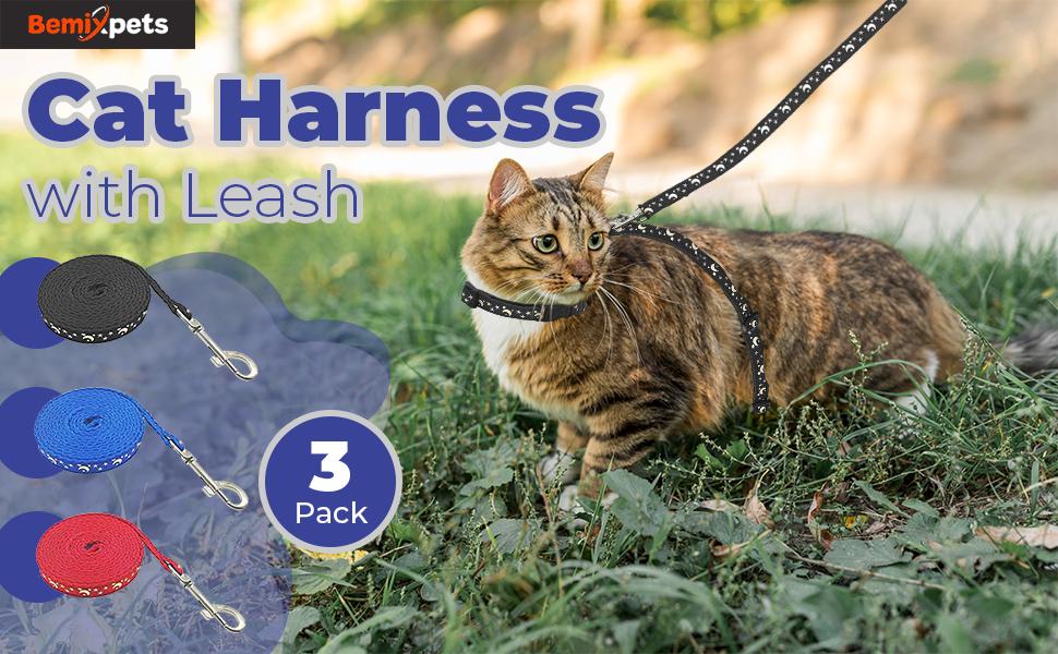 cat harness main