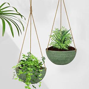 wall hanging planter