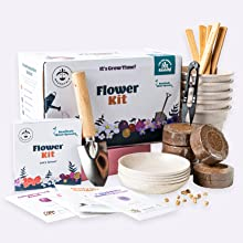 easy to grow plant kit plant growing kit plant growing kit planting kit indoor planting kit flowers