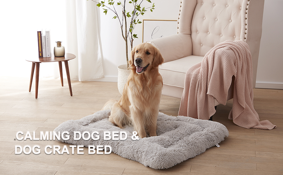 dog crate beds large dogs
