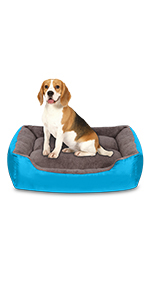 bed for large dog