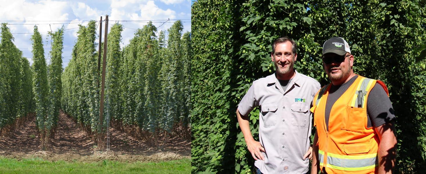 Northwestern Hops Co-OP Harvest