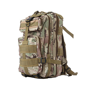 Backpack  for the adult