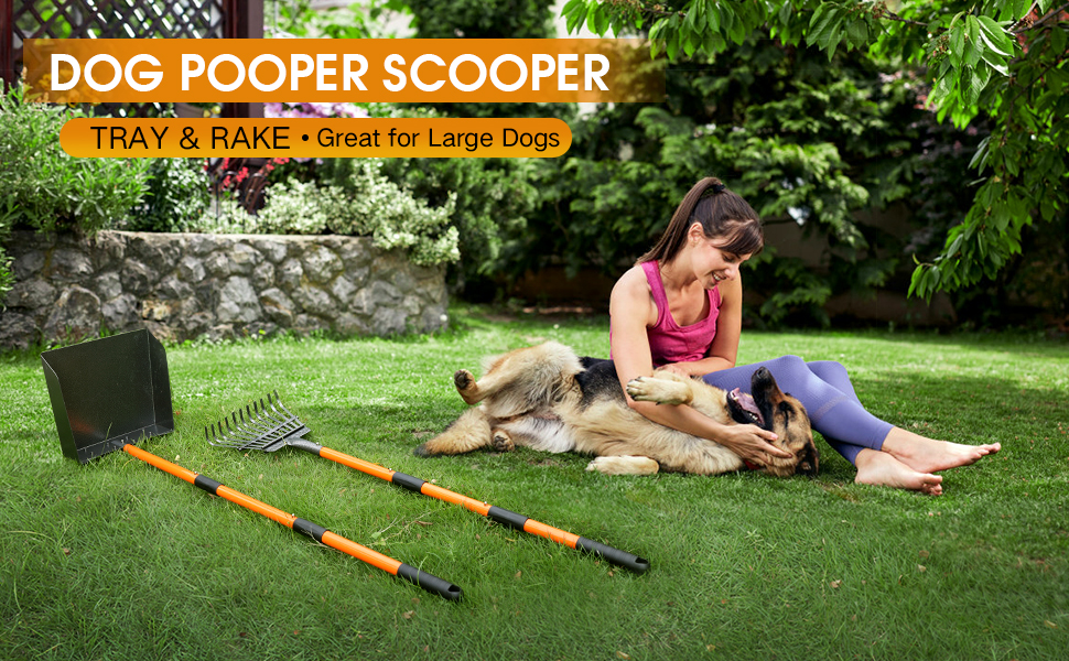 Bigger pooper scooper, scoop up your dogs poop without  having to bend down