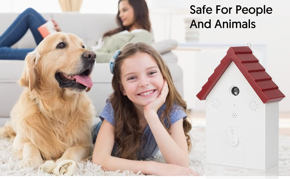 Safe for People And Animals