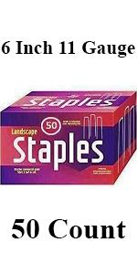 SodStaples50