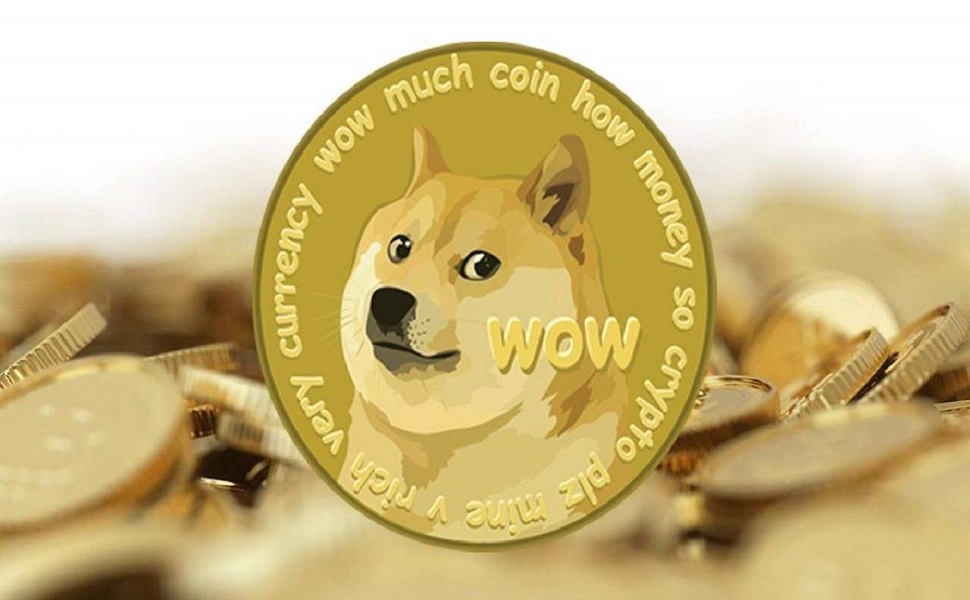 Amazing Doge coin