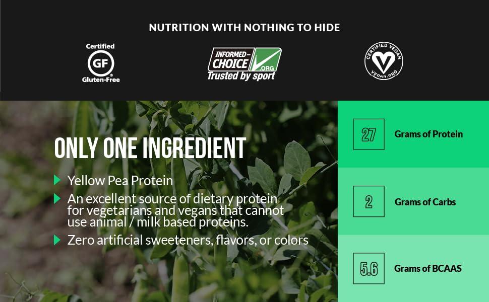 yellow pea protein powder, vegan protein powder, 5lb pea protein powder, gluten free vegan protein