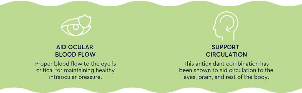 eye multivitamin, leutine amp;amp; zeaxanthin, eye formula, astaxanthin 10mg gummies