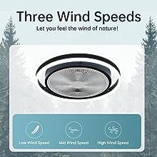 3 speeds ceiling fan