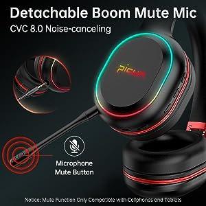 Detachable Boom Mic