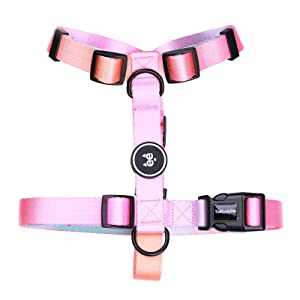 harness for dogs girl