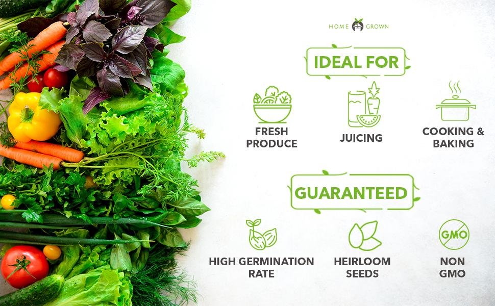1000 Pcs Vegetable Seeds Combo Pack With Nutritionally Balanced Non-GMO Heirloom