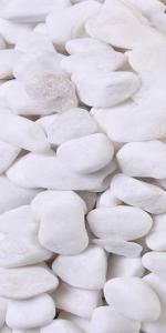 5 lb White Gravel
