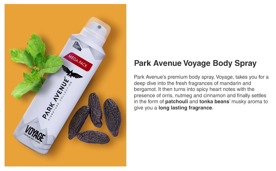Park Avenue Voyage Signature Deo For Men 220ml