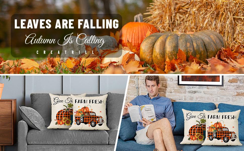 fall farmhouse pillow covers